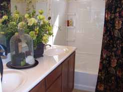 Arizona new house master bathroom