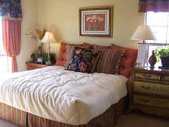 Arizona new house master bedroom